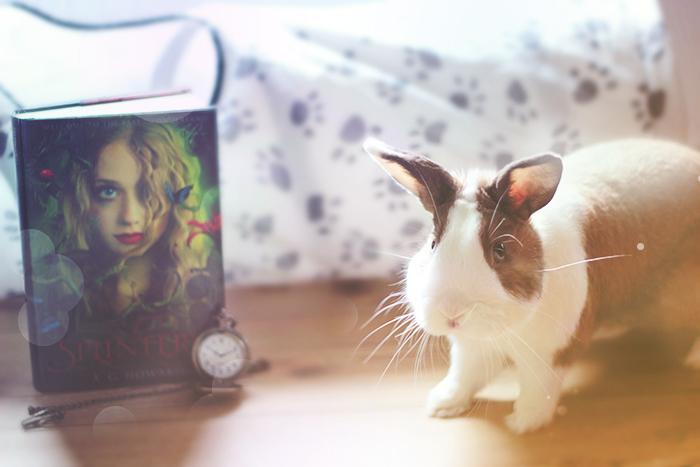 BunnySplintered