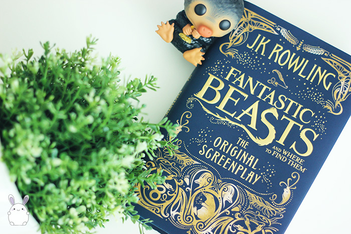 fantastic_beasts_and_where_to_find_them_screenplay_05_make_it_personal